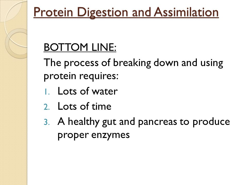 Protein Digestion and Assimilation