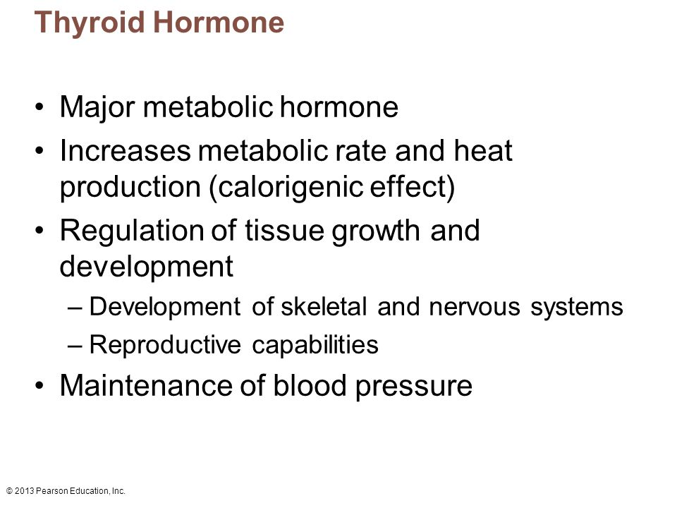 Major metabolic hormone