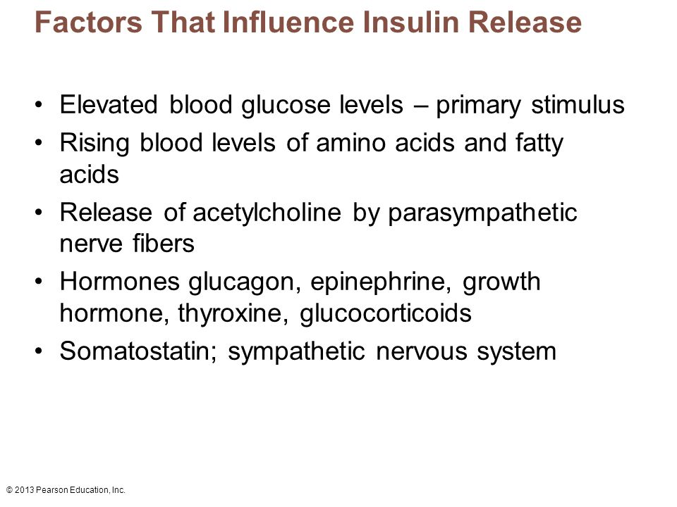 Factors That Influence Insulin Release