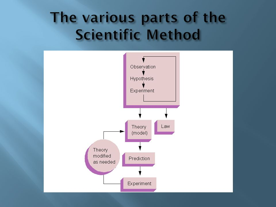 The various parts of the Scientific Method