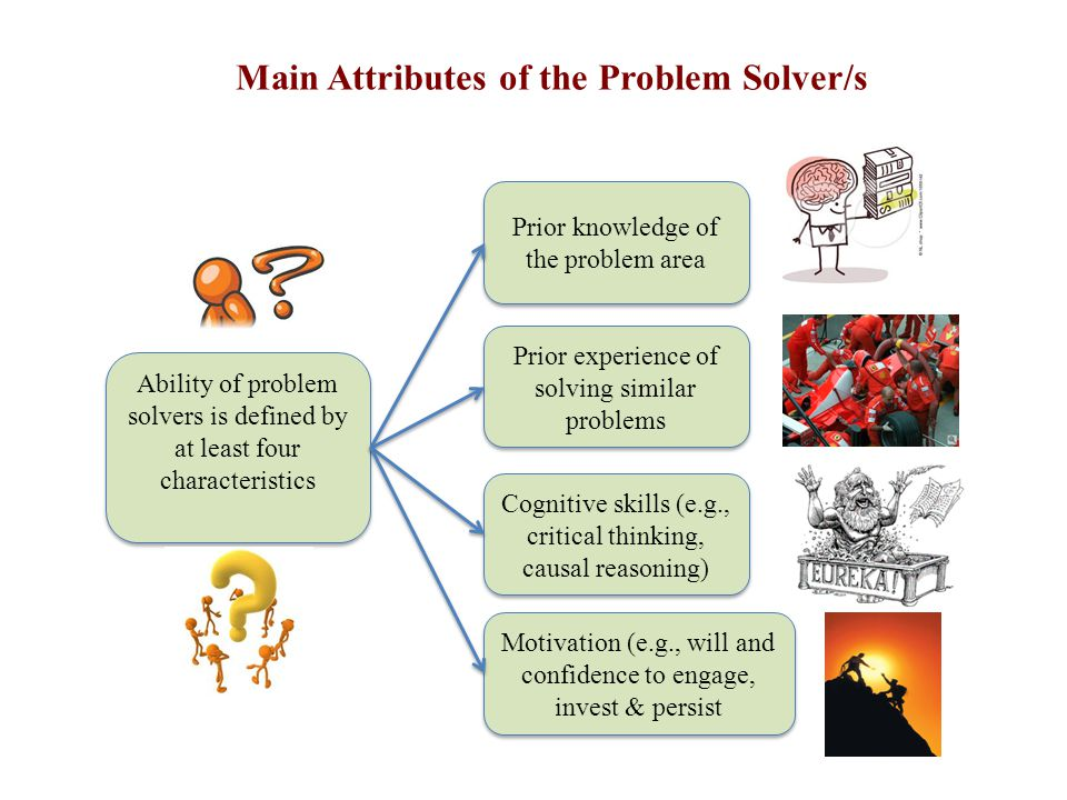 Main Attributes of the Problem Solver/s