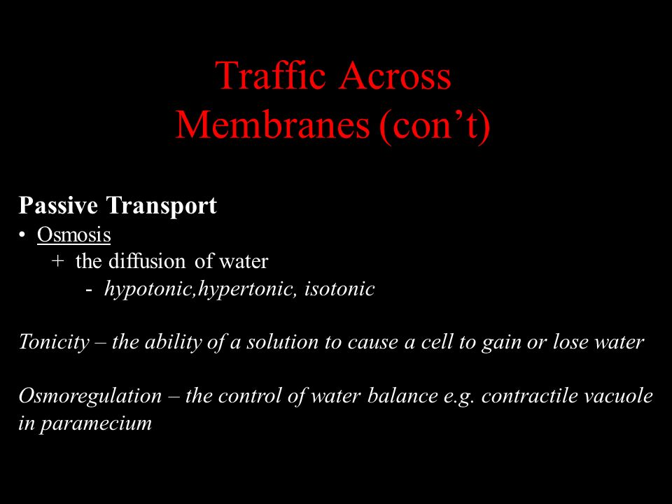 Traffic Across Membranes (con't)