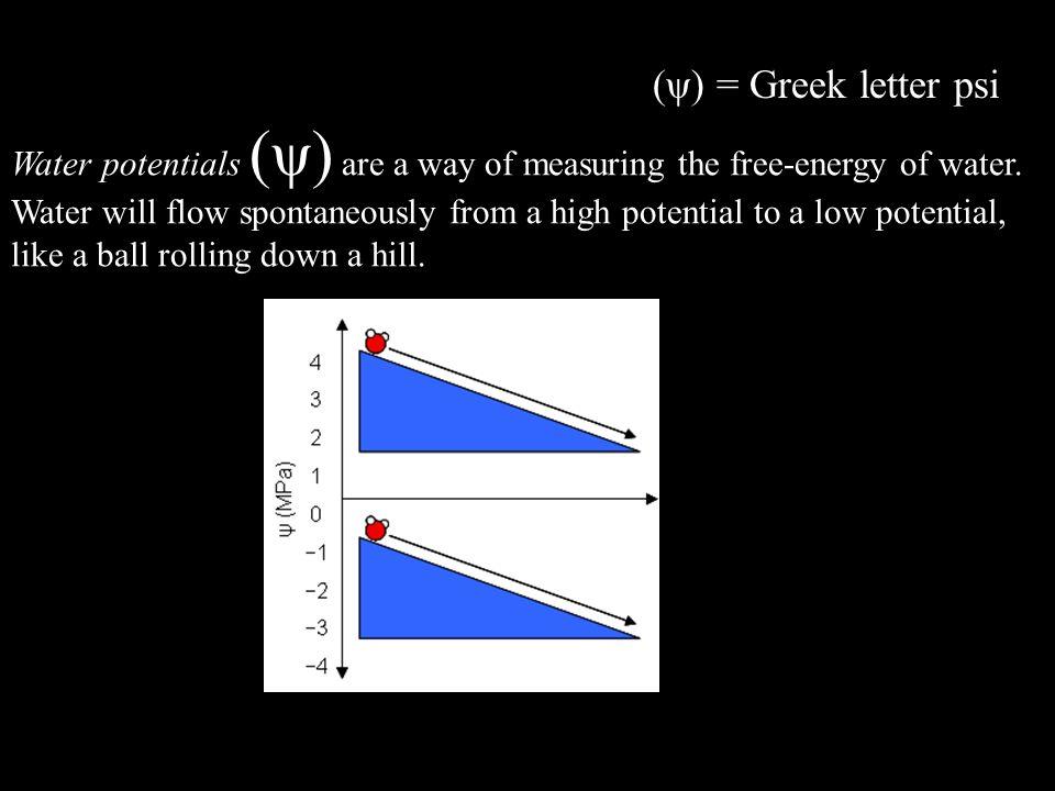 (ψ) = Greek letter psi