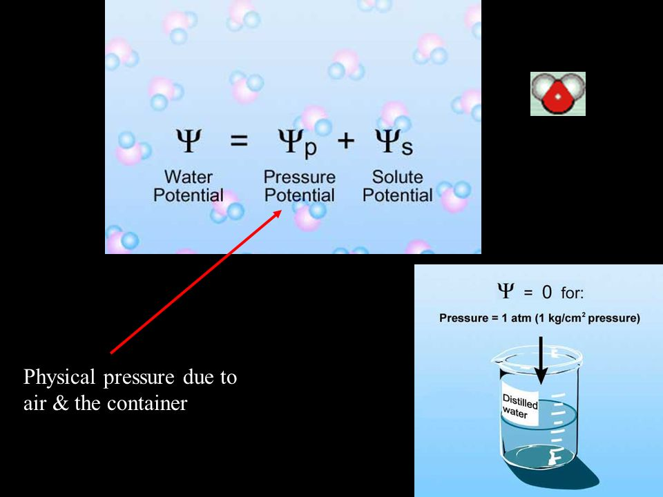 Physical pressure due to air & the container
