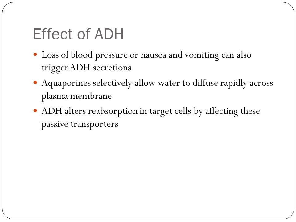Effect of ADH Loss of blood pressure or nausea and vomiting can also trigger ADH secretions.