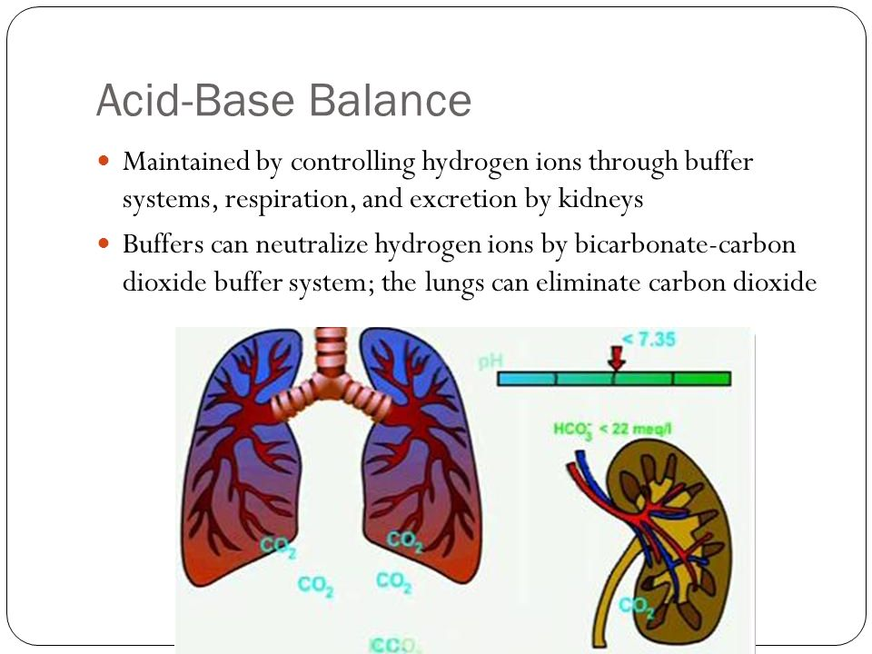 Acid-Base Balance Maintained by controlling hydrogen ions through buffer systems, respiration, and excretion by kidneys.