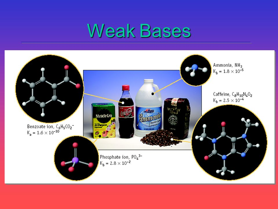Weak Bases