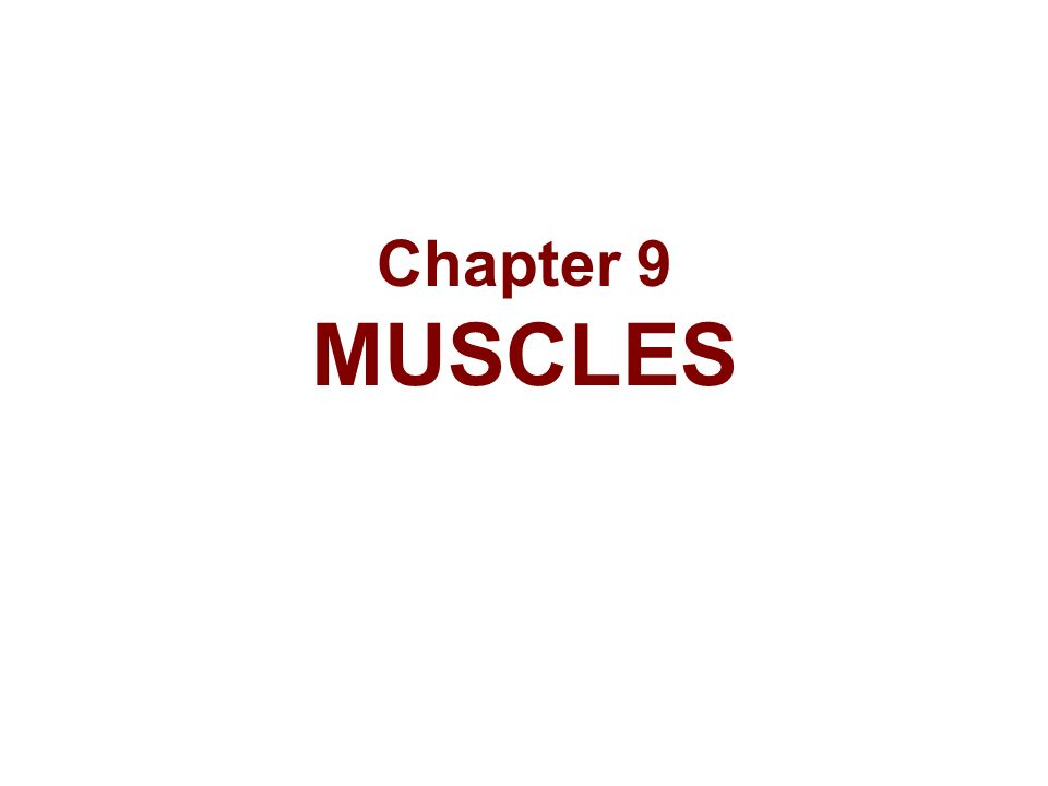 Chapter 9 MUSCLES