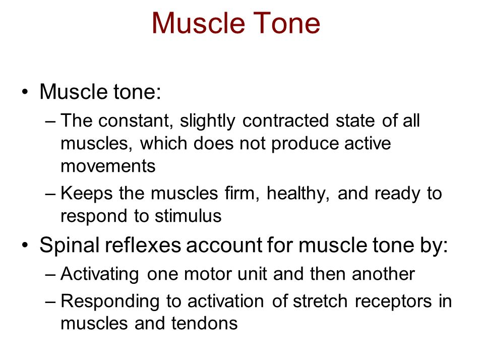 Muscle Tone Muscle tone: Spinal reflexes account for muscle tone by: