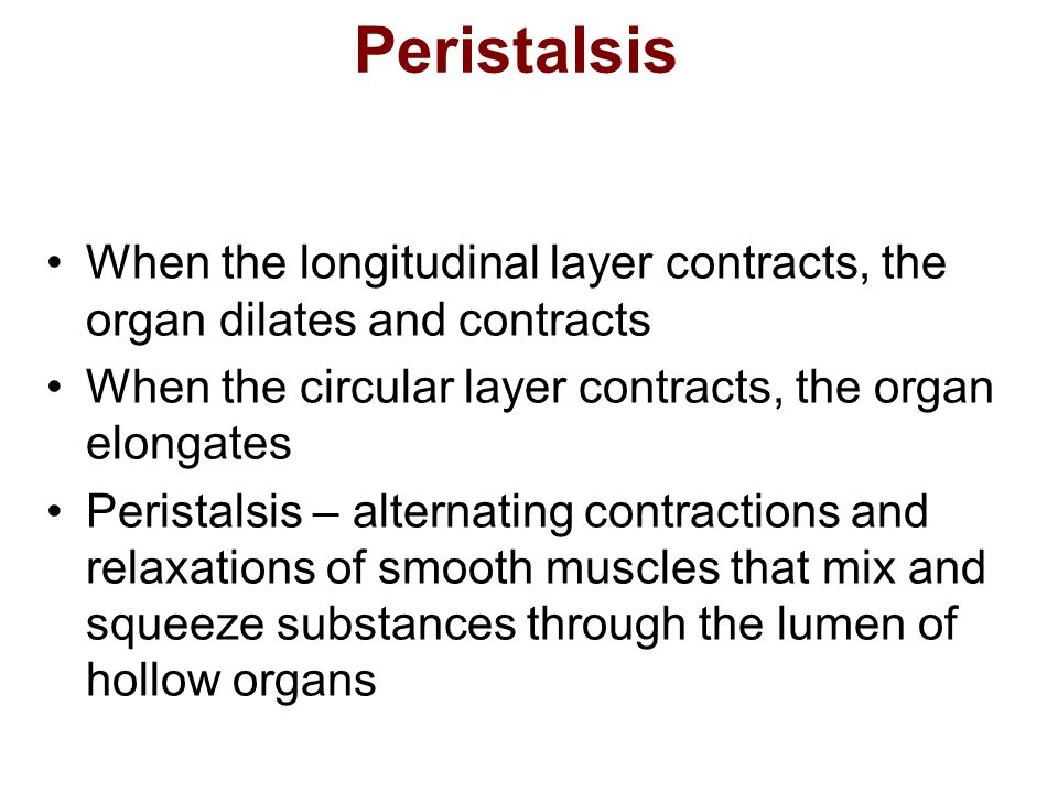 Peristalsis When the longitudinal layer contracts, the organ dilates and contracts. When the circular layer contracts, the organ elongates.