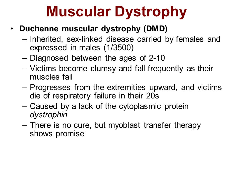Muscular Dystrophy Duchenne muscular dystrophy (DMD)