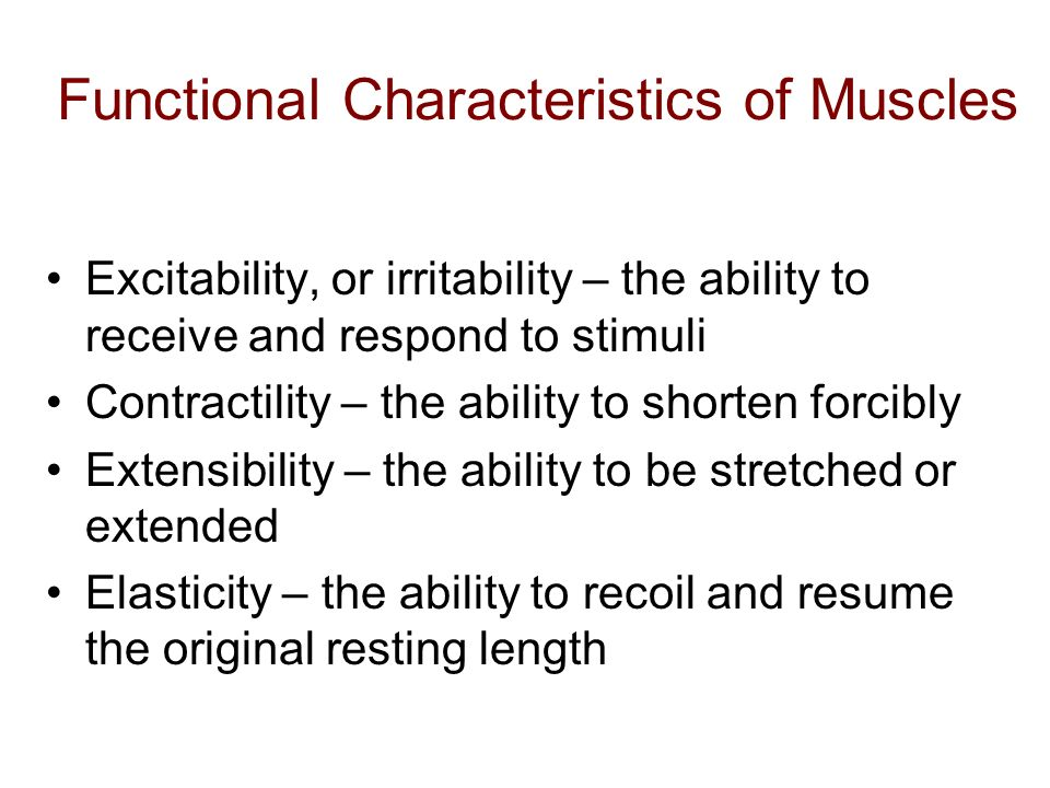 Functional Characteristics of Muscles