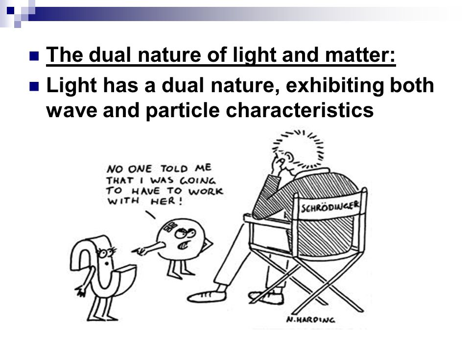 The dual nature of light and matter:
