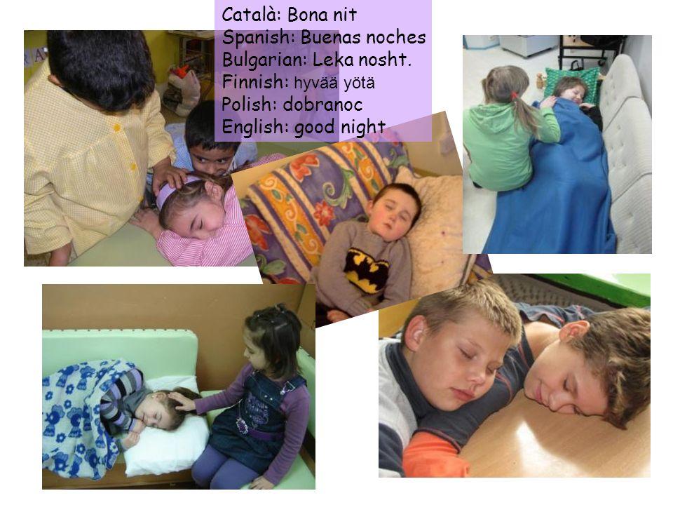 Català: Bona nit Spanish: Buenas noches. Bulgarian: Leka nosht. Finnish: hyvää yötä. Polish: dobranoc.