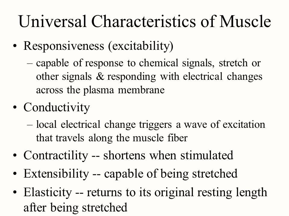 Universal Characteristics of Muscle