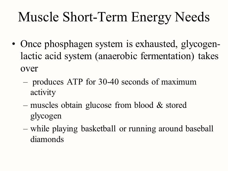 Muscle Short-Term Energy Needs