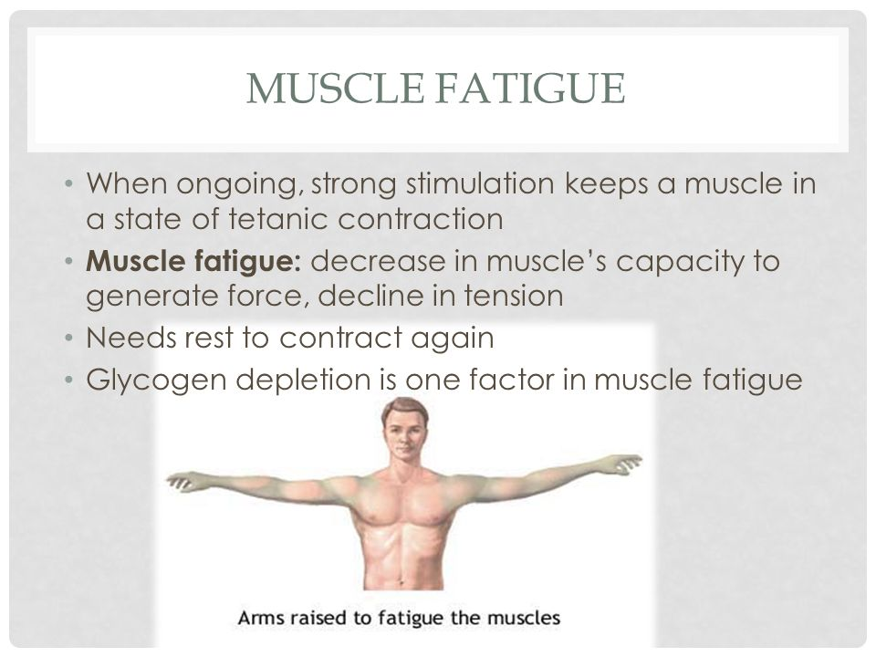 Muscle Fatigue When ongoing, strong stimulation keeps a muscle in a state of tetanic contraction.