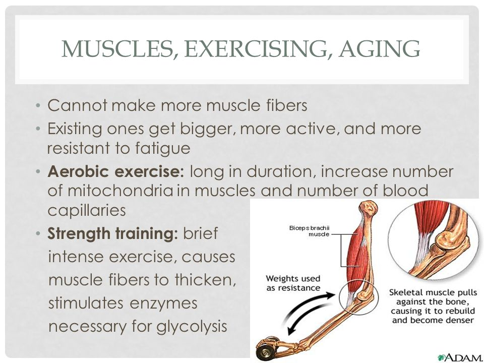 Muscles, Exercising, Aging