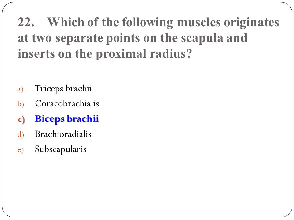 22. Which of the following muscles originates at two separate points on the scapula and inserts on the proximal radius