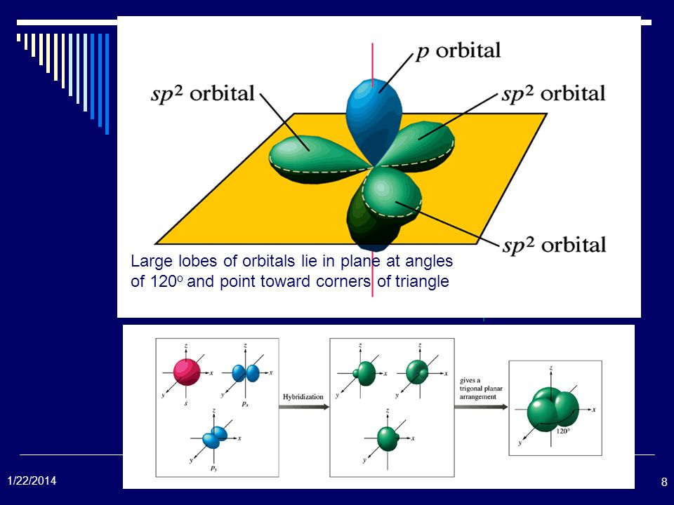 Large lobes of orbitals lie in plane at angles of 120o and point toward corners of triangle