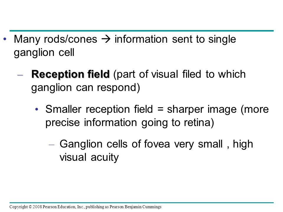 Many rods/cones  information sent to single ganglion cell