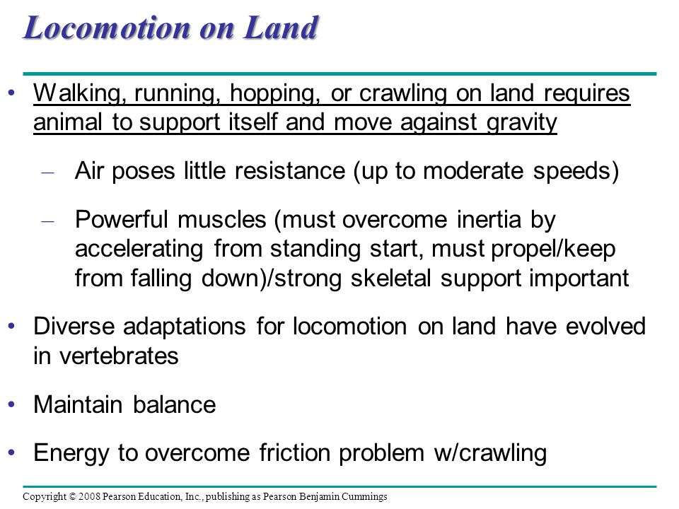 Locomotion on Land Walking, running, hopping, or crawling on land requires animal to support itself and move against gravity.
