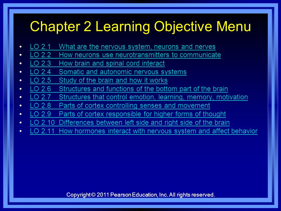 Chapter 2 Learning Objective Menu