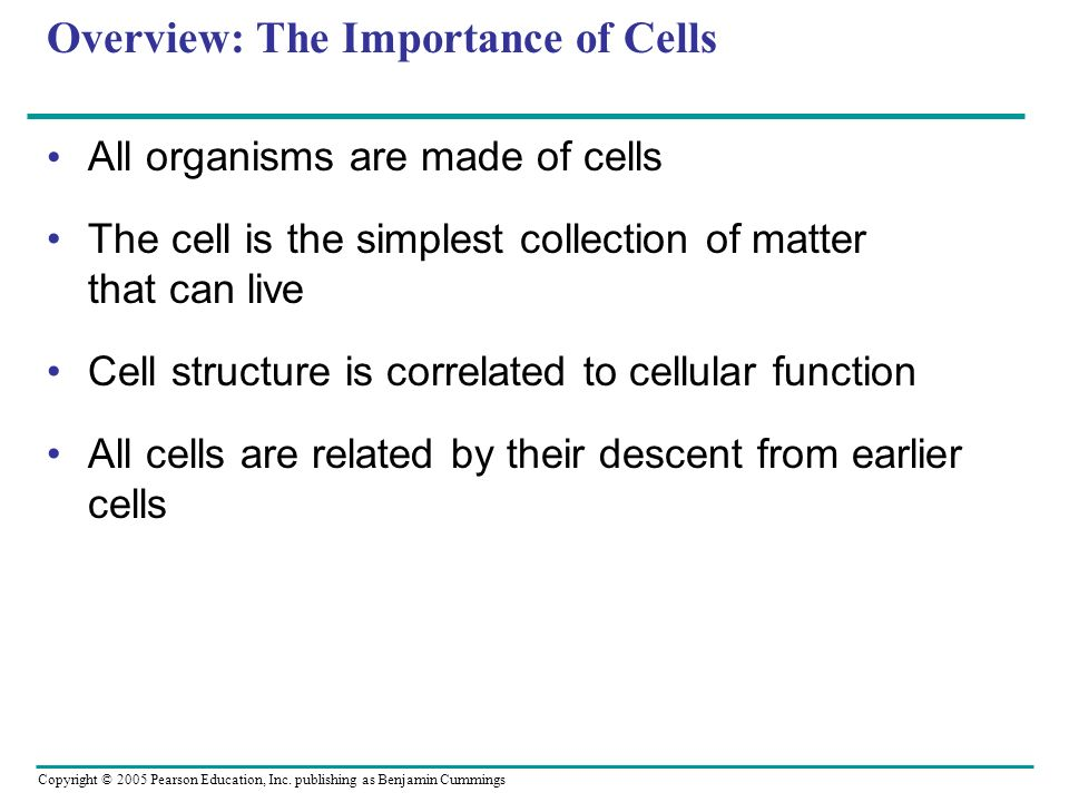 Overview: The Importance of Cells