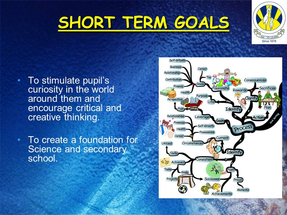 SHORT TERM GOALSTo stimulate pupil's curiosity in the world around them and encourage critical and creative thinking.