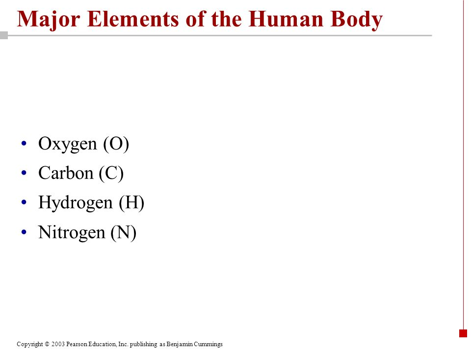 Major Elements of the Human Body