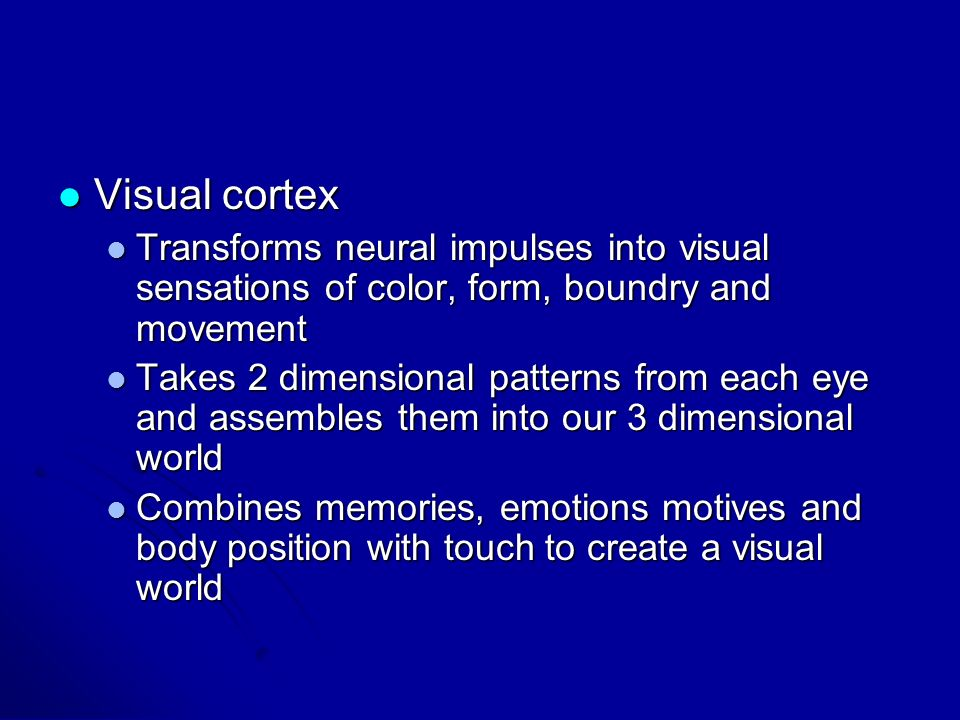 Visual cortex Transforms neural impulses into visual sensations of color, form, boundry and movement.
