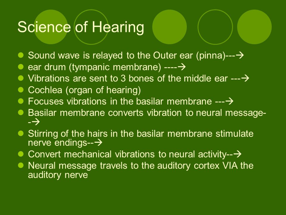Science of Hearing Sound wave is relayed to the Outer ear (pinna)---
