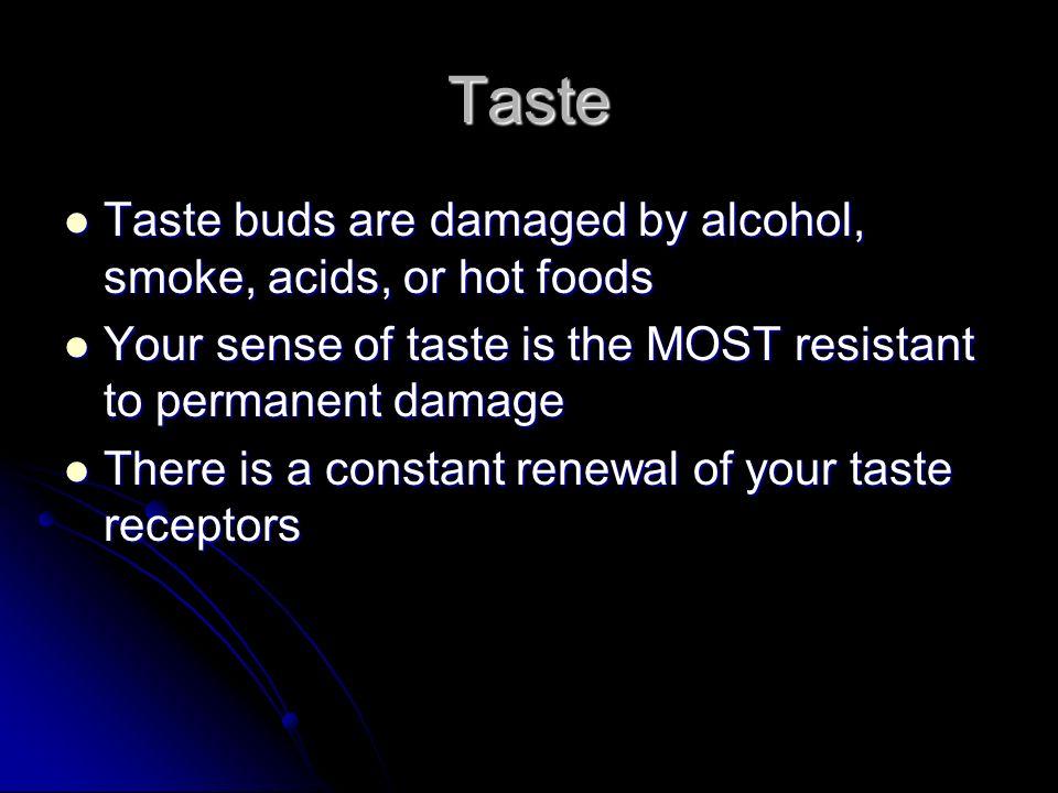 Taste Taste buds are damaged by alcohol, smoke, acids, or hot foods
