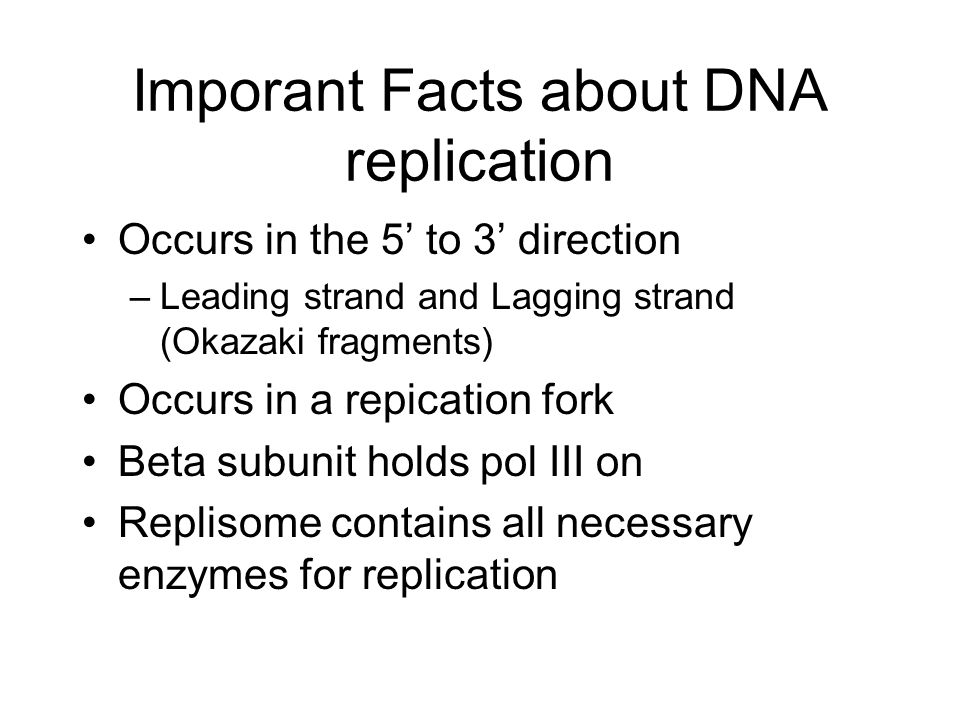 Imporant Facts about DNA replication