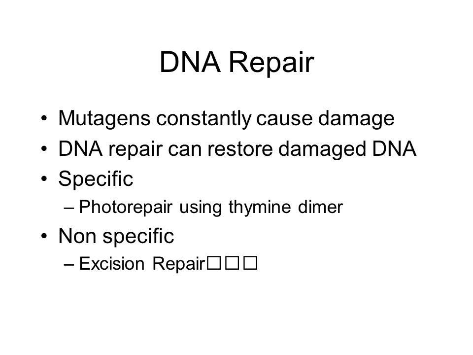 DNA Repair Mutagens constantly cause damage