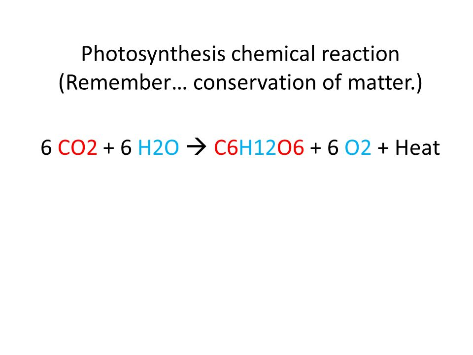 Photosynthesis chemical reaction (Remember… conservation of matter.)