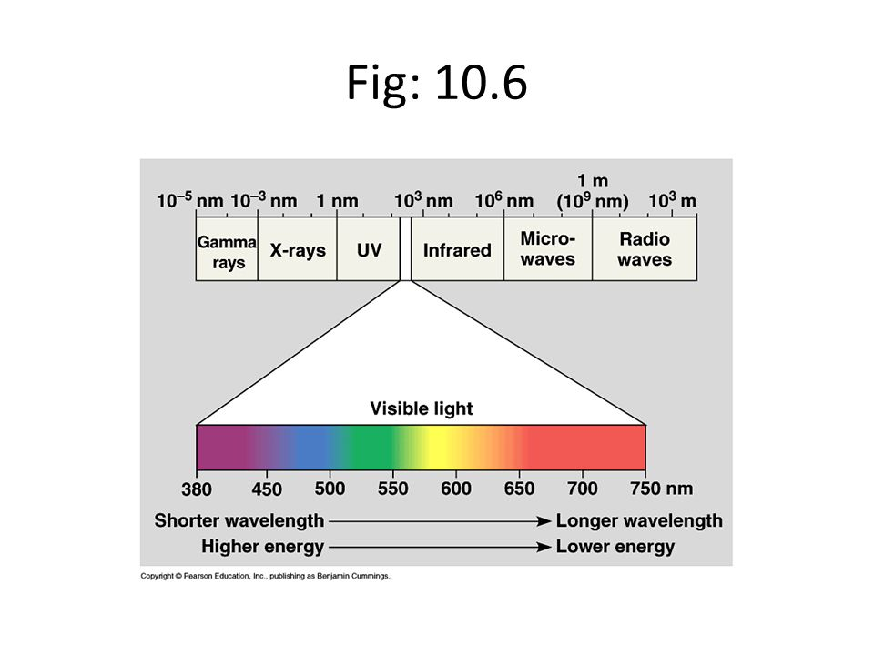 Fig: 10.6