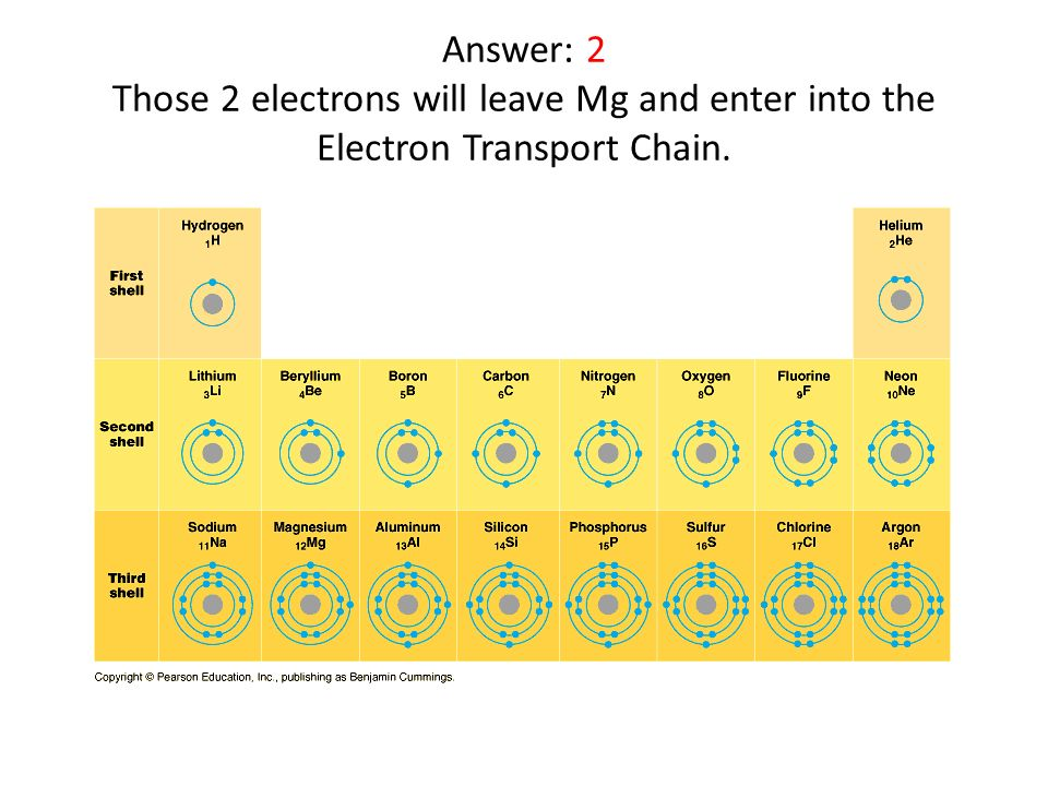 Answer: 2 Those 2 electrons will leave Mg and enter into the Electron Transport Chain.