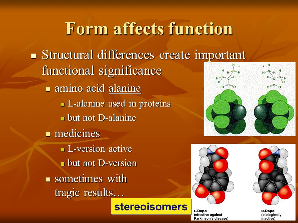 Form affects function Structural differences create important functional significance. amino acid alanine.