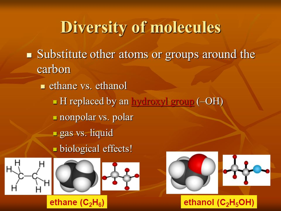 Diversity of molecules