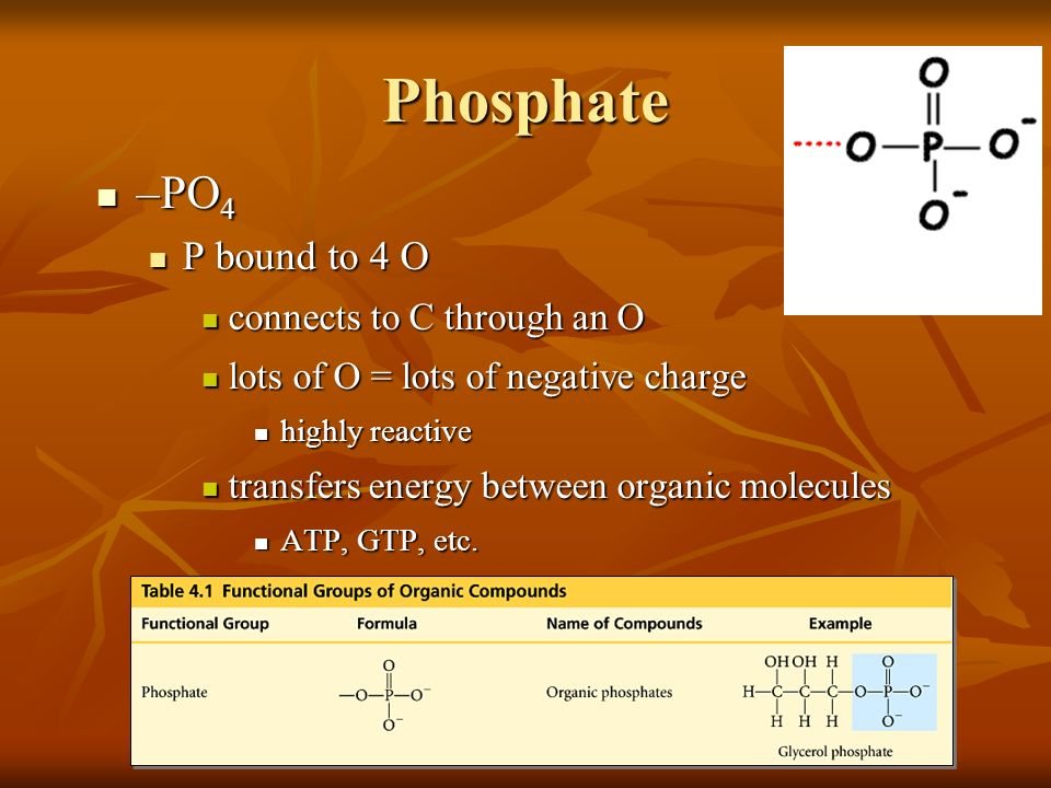 Phosphate –PO4 P bound to 4 O connects to C through an O