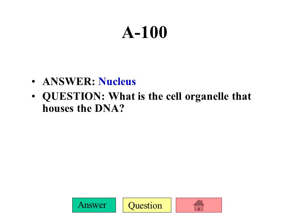 A-100 ANSWER: Nucleus QUESTION: What is the cell organelle that houses the DNA