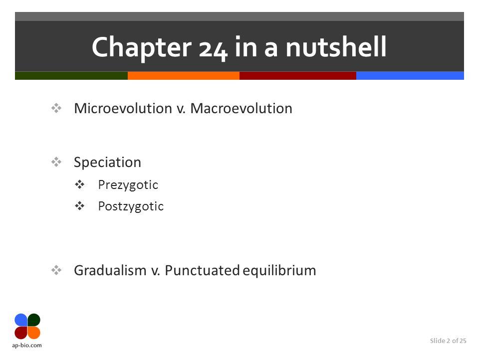 Chapter 24 in a nutshell Microevolution v. Macroevolution Speciation