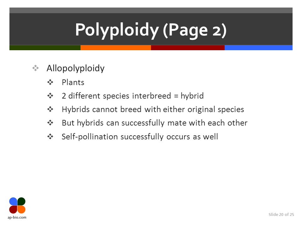 Polyploidy (Page 2) Allopolyploidy Plants