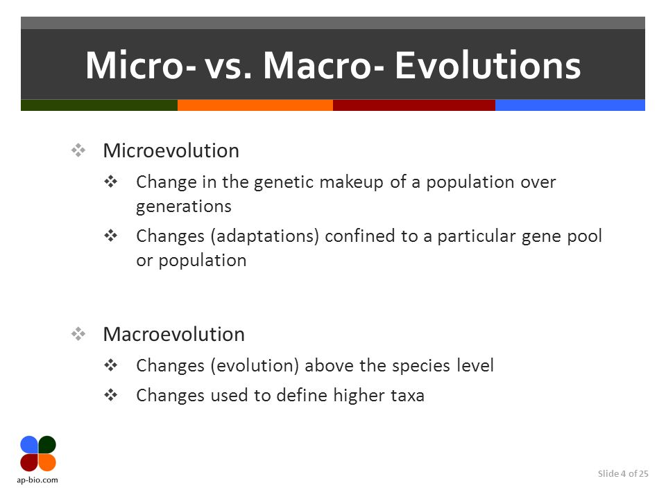 Micro- vs. Macro- Evolutions
