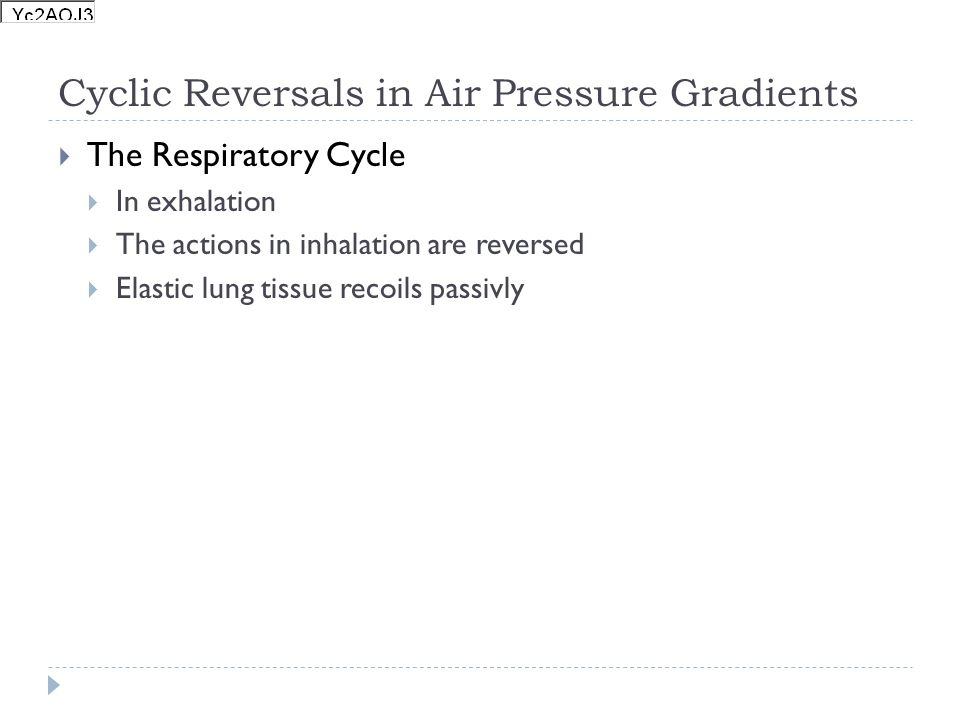 Cyclic Reversals in Air Pressure Gradients