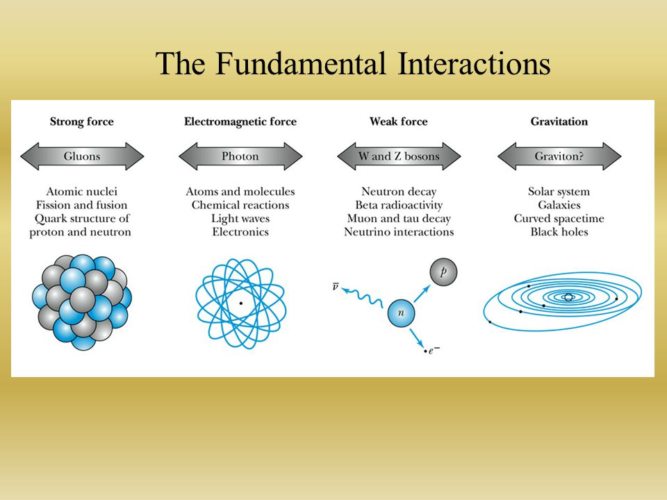 The Fundamental Interactions