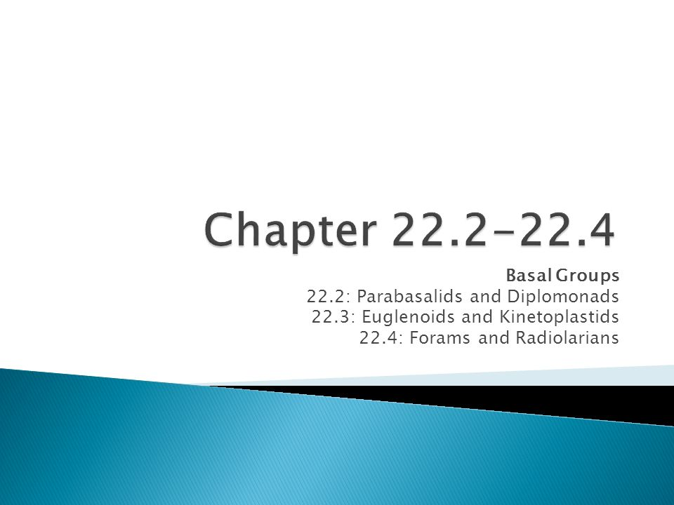 Chapter 22.2-22.4 Basal Groups 22.2: Parabasalids and Diplomonads