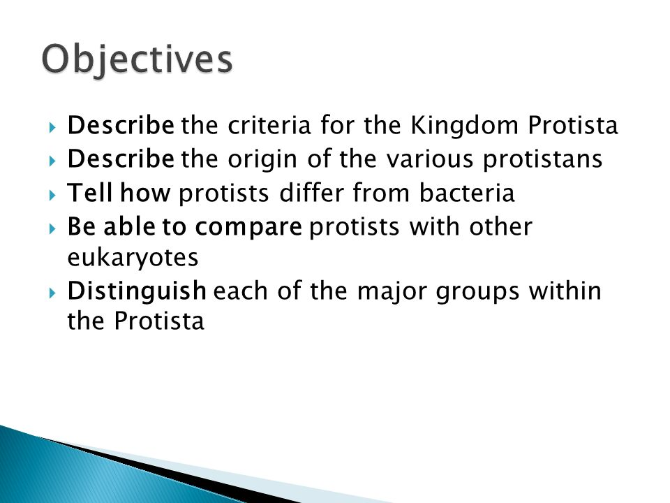 Objectives Describe the criteria for the Kingdom Protista