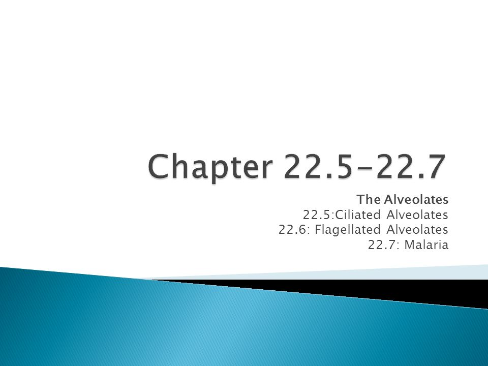 Chapter The Alveolates 22.5:Ciliated Alveolates